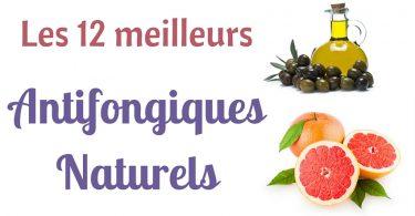12-meilleurs-antifongiques