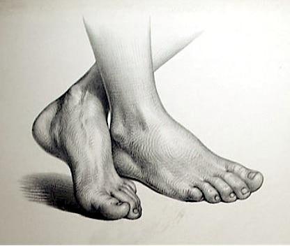 Champignons_des_pieds