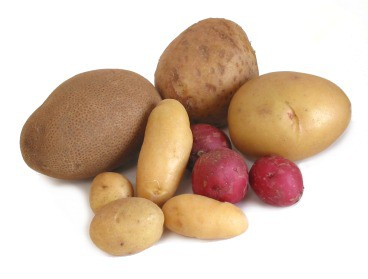 patates-