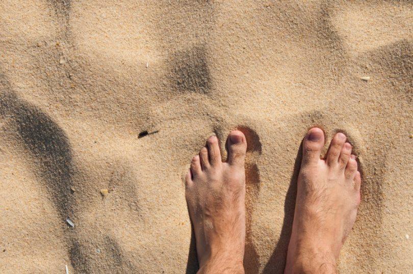 oignons-pieds-naturel