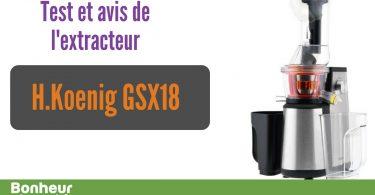 Test-extracteur-H-Koenig-GSX-18-1