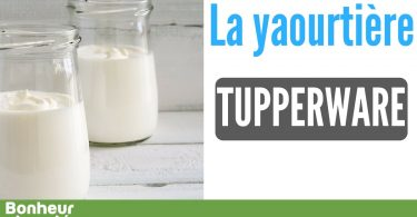 Yaourtiere-tupperware