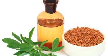 Bienfaits du fenugrex-huile essentielle, feuilles et grains