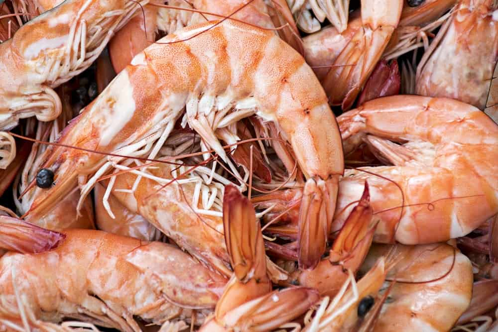 8 bienfaits du chitosan-crevettes