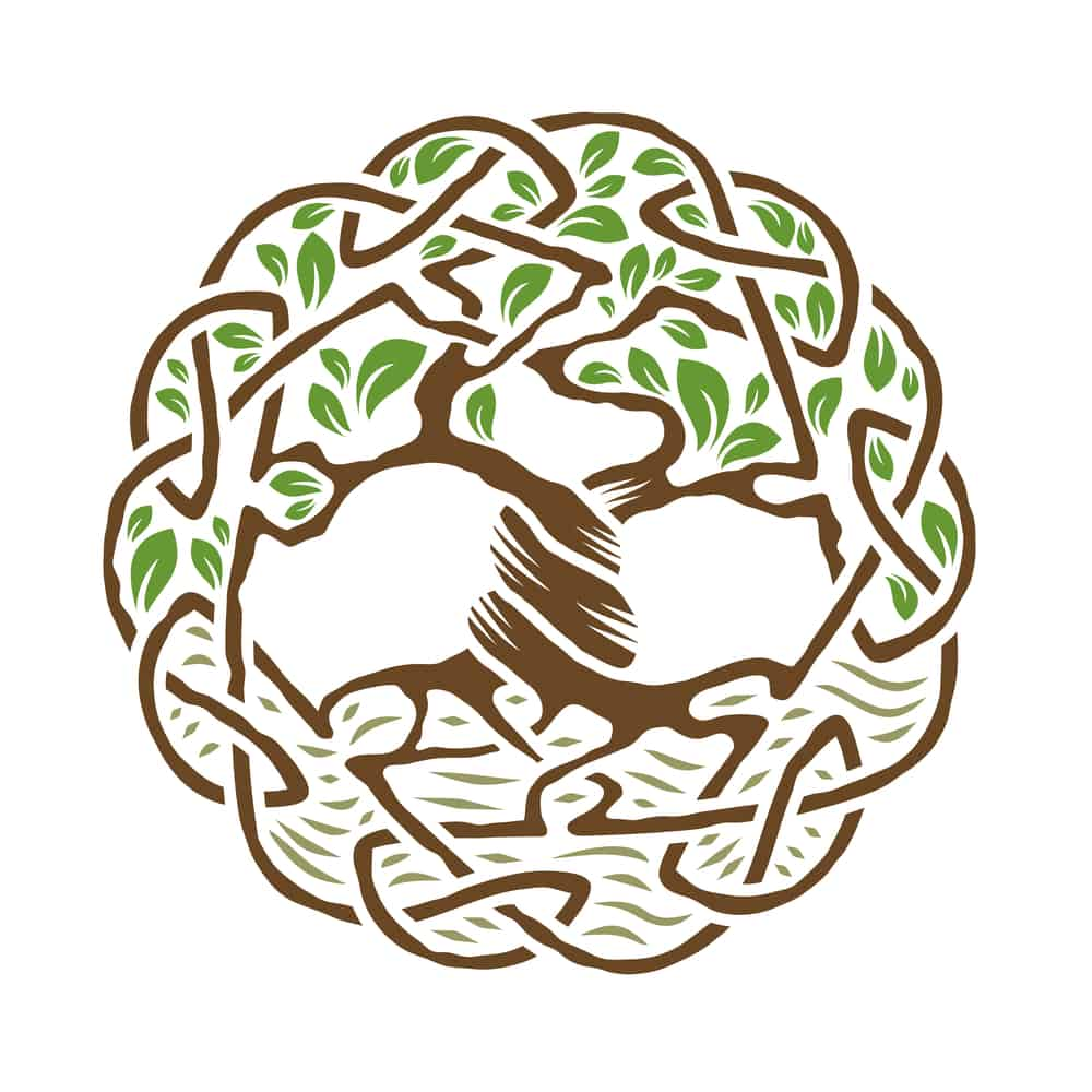 arbre de vie histoire origine et symbole et des atuces pour le dessiner bonheur et sant. Black Bedroom Furniture Sets. Home Design Ideas