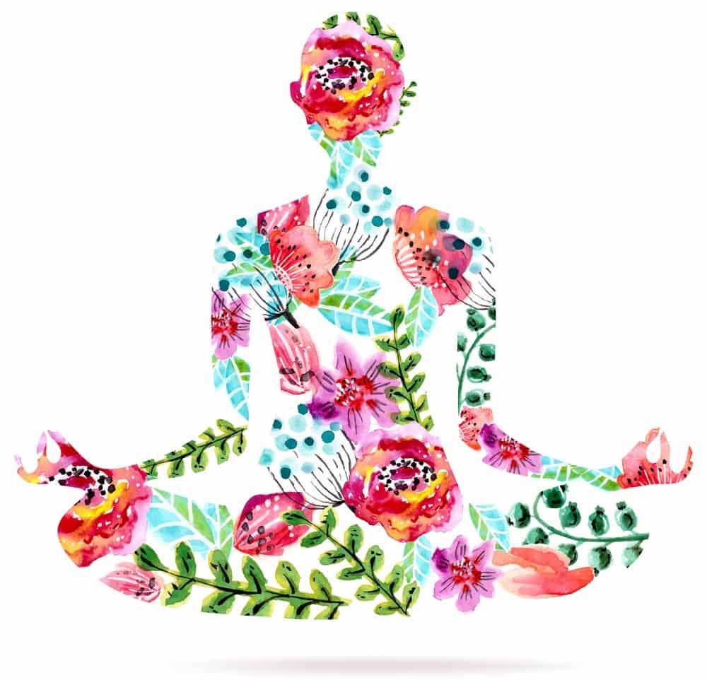 La Fleur De Lotus Tout Savoir Sur Son Histoire Et Sa Signification