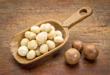 noix-de-macadamia